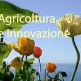 agricoltura3.JPG